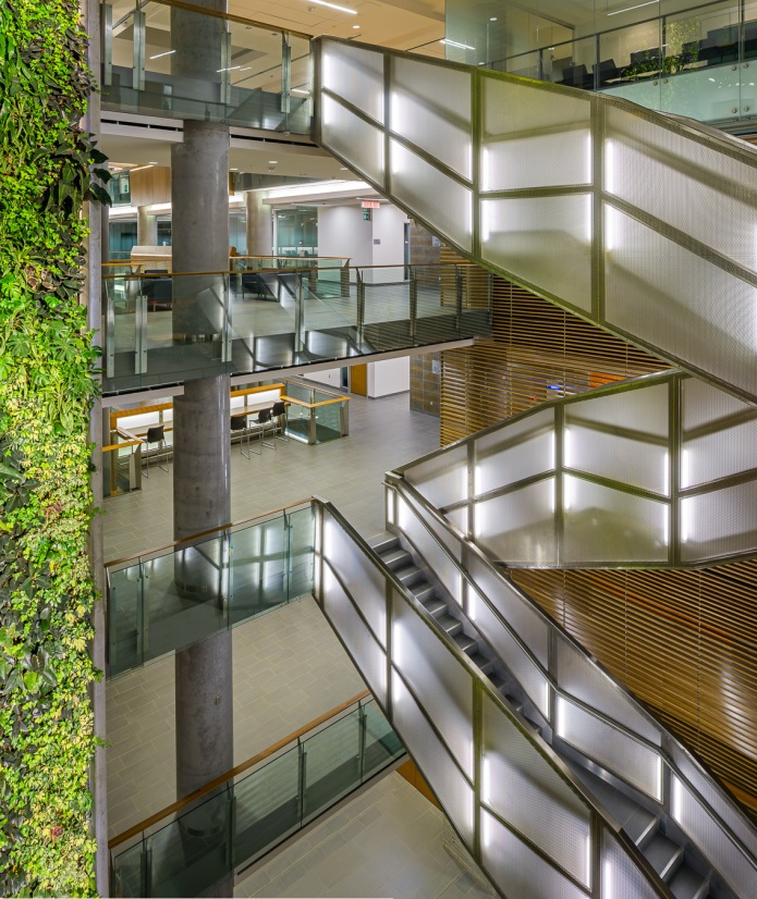 The main feature stair and the 6-floor living wall - University of Ottawa Faculty of Social Sciences by Diamond Schmitt